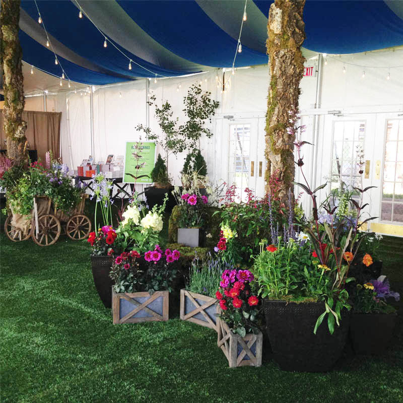Plant Rental and Design at an Event in Aspen, CO